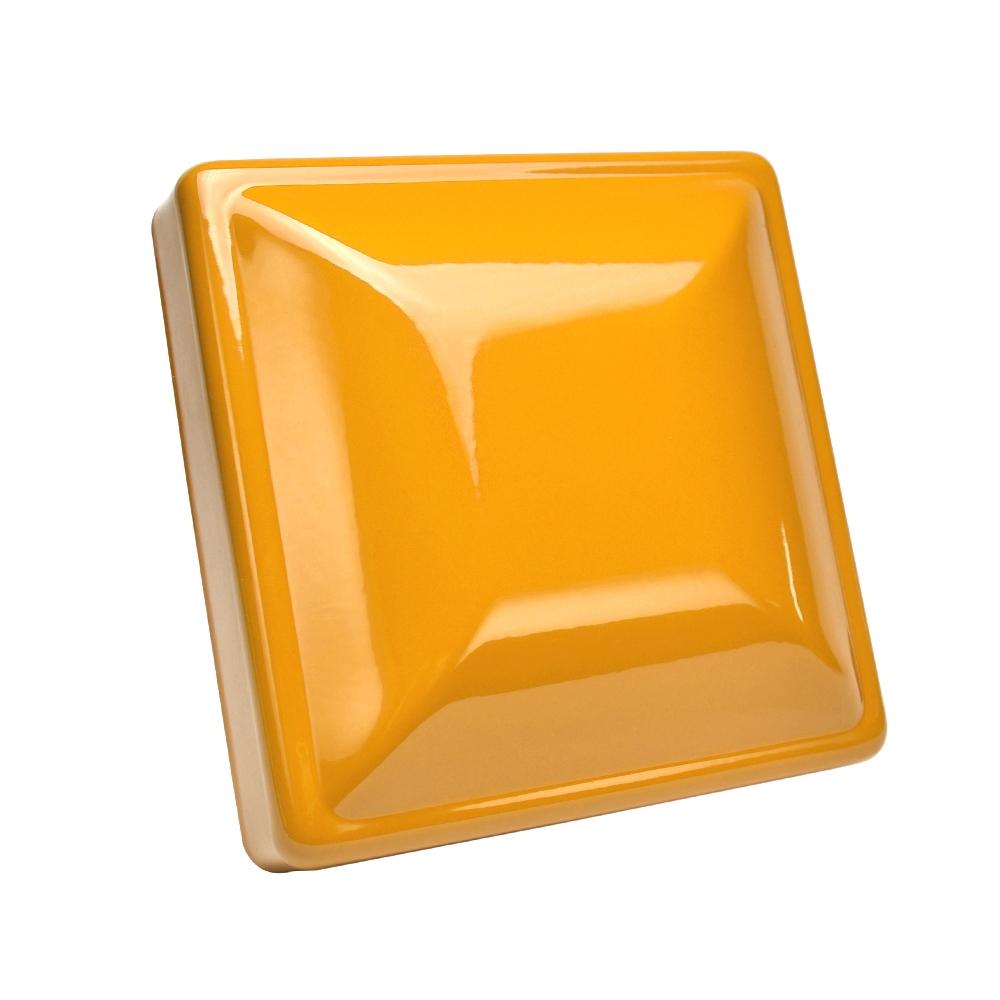 RAL-1007 - Chrome Yellow